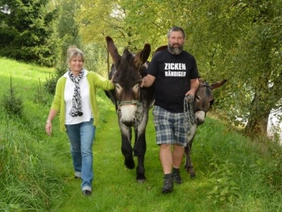 Wandern mit Esel in Seiffen, Foto: Stein
